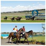 Stable Success with Double on Home Track