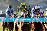 Treble On Final Day at the Bool