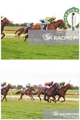 Stable Double At Warracknabeal