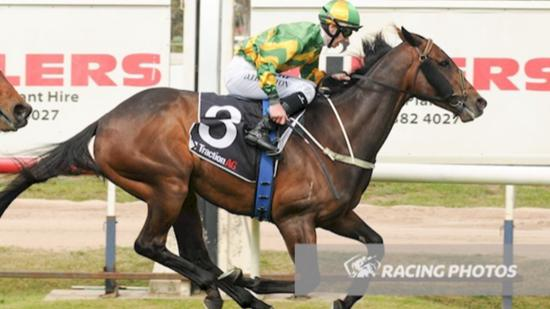 Horsham Cup For Our Bottino