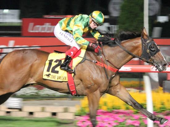 Paremuus Boy Wins Under Lights At The Valley