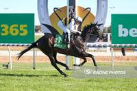Stable Star Harbour Views Remains Unbeaten