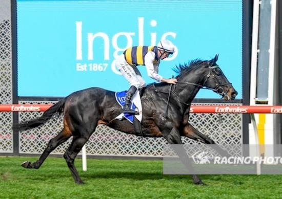 Cox Plate Within Harbour's View