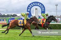 Stable Quinella With Debutante's At The Bool