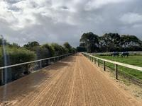 Heavy Sand Track at Stables.jpg