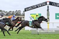 Sunburnt Scores Win At Hamilton