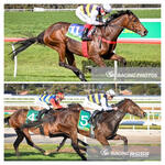 Stable Double Rewards Owners Patience
