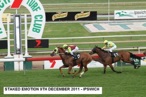 STAKED EMOTIONS WINS IPSWICH