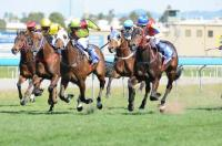 TANGO KING WINS GOLD COAST MAIDEN 1200m