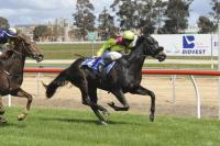 FLYING KYLE WINS PAKENHAM MAIDEN 1300M