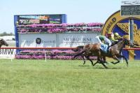 BELLS OF TROY WINS CAULFIELD FRANK O'BRIEN HANDICAP 2000M