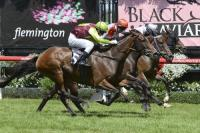 BELLS OF TROY WINS FLEMINGTON Open 2000m
