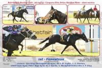 FENESTON WINS Maiden 1600m BAIRNSDALE
