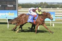IMPECCABLE ME WINS 2YO SV GOLD MAIDEN BALLARAT