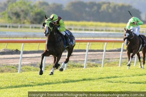 I'M ADAMANT LEADS ALL THE WAY AT MURWILLUMBAH