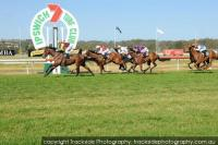 COUNT APOLLO WINS IPSWICH MAIDEN 1200m