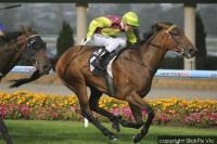 MIGHTIEST WINS MOONEE VALLEY 2040M