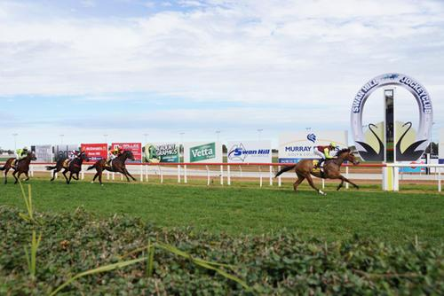 FAST CASH IMPRESSIVE DEBUT WIN SWAN HILL