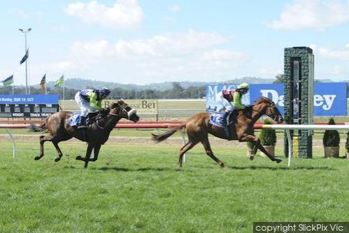 MISS GALATO WINS SEYMOUR 3YO FILLIES SV MAIDEN