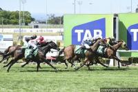 BON ROCKET RECAPTURES WINNING FORM