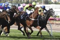BON ROCKET WINS FLEMINGTON