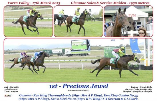Precious Jewel 17th March Yarra Valley.jpg