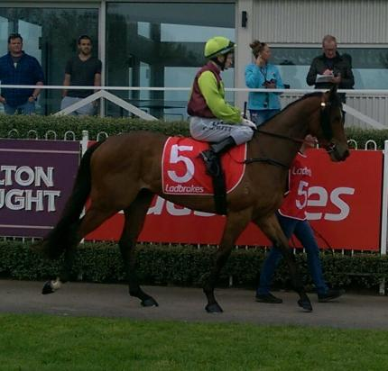 Photo Mornington Races 28th Sept 2016.jpg
