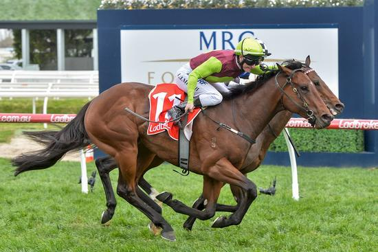 Photo Winning Caulfield Testa Rossa Horse 23 Sept 2017.JPG