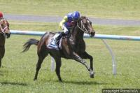 Rapid Double For Ridgeview Park