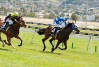 Bianconi's 2YO Specialist wins Hobart's first Juvenile Race of the Season