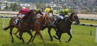 Warrior Of Fire Wins Hobart Guineas LR