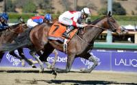 American Import London Bridge To Make An Impact In Victoria (The Sportsman)
