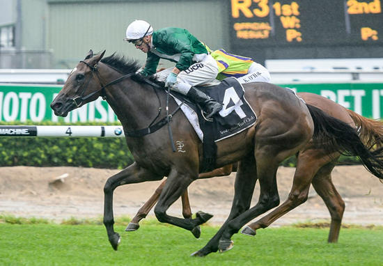 Onemorenomore's One More Honey Toughs It Out In Sweet Embrace Stakes (Breednet)
