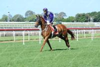Pretty Face keeps the ball rolling for O'Dea