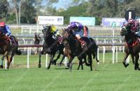 Tips N Tales too strong at Eagle Farm