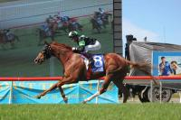 Sir Moments bounces back to his best