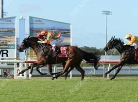 One More Kiss scores at the Sunshine Coast
