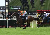 Dream Kisses Confirms Magic Millions Plans