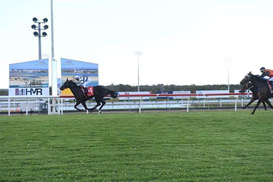 D'Harmony races away to win at the Sunshine Coast