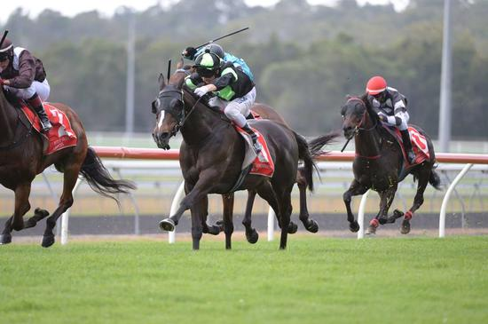 Really Reilly Wins for O'Dea and Proven Thoroughbreds