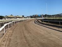 Sand Track.JPG