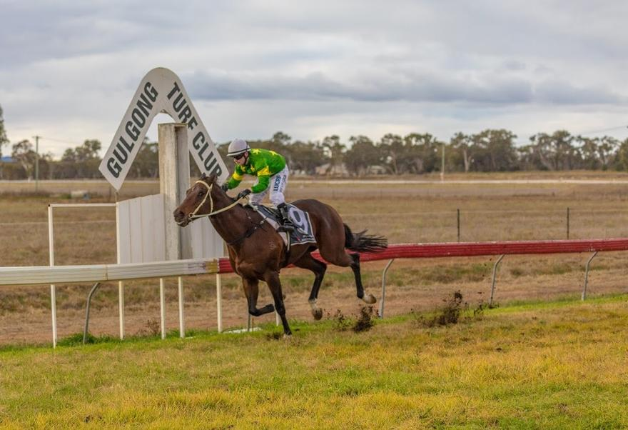 Hometown trainer Brett Thompson lands the quinella in Gulgong Cup