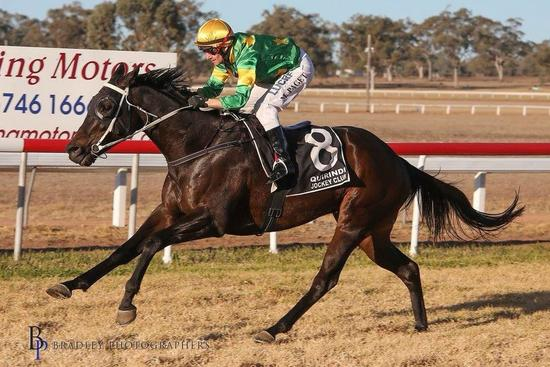 Killer Miller took home the Quirindi Cup on the 23rd June 2018.