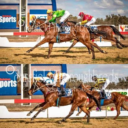 MOROTAI + SORRY I'M AWESOME run first at FORBES Races 06/08/18
