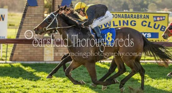 SEA LADY takes home a win at Coonabarabran Races