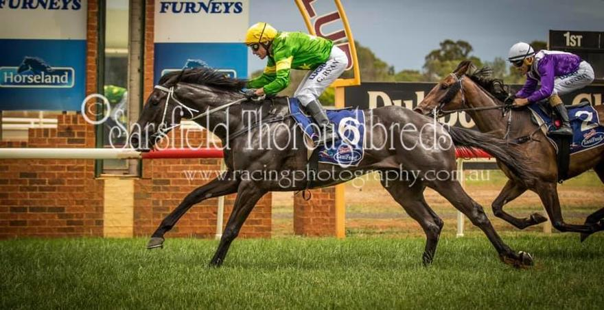 LARYNX comes first at Dubbo!