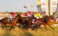 Racing Thursday at Pinny