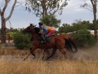 Bunbury Stakes Day