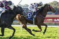 Massa Mac Heads to Northam