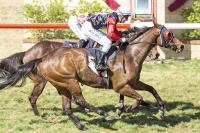 Narrogin Cup Day